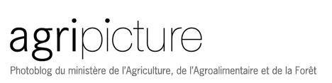 agripicture